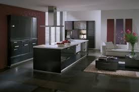 cuisine suspendue cuisine avec cuisinière dans l ilot et hotte suspendue futur