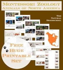 printable montessori curriculum montessori zoology animals of north america free printables