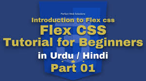 css tutorial in urdu part 01 flex css tutorial series in urdu 2018 what is flexbox css