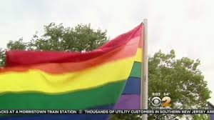 Lgbt Flag Meaning Pride Parade Has Special Meaning Youtube