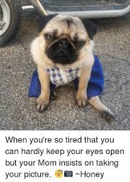 So Tired Meme - extremely tired mom meme tired best of the funny meme