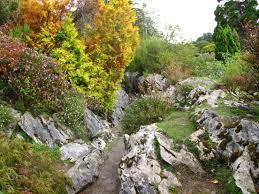 100 rocks in gardens landscaping supplies rocks u0026 stone