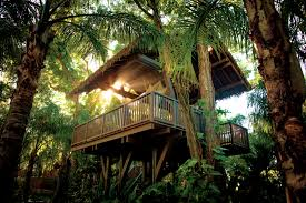 5 luxury hotels in the trees fortune