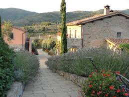 home casa portagioia bed and breakfast tuscany looking back the path from the pool picture of casa
