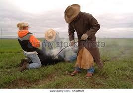 ranchers stock photos u0026 ranchers stock images alamy