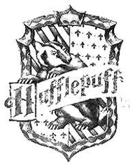 lord voldemort revolutionizing harry potter websites deathly