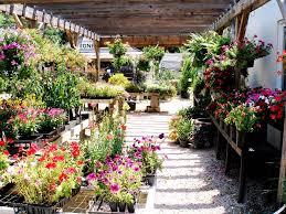 landscape design u0026 installation nursery garden center u0026 gift shop