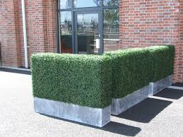 Fake Bushes Artificial Shrubs Outdoor Uk Artificial Hedges In Docklands From