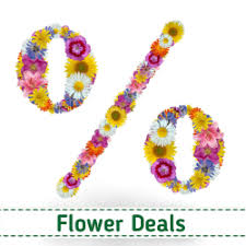 flower deals flowers malta delivery flower land local florist send flower
