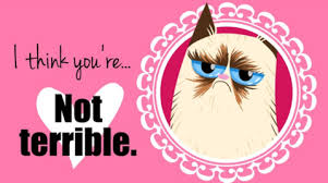 Grumpy Cat Meme Valentines Day - 14 purrfect puns for your pun loving valentine meowingtons