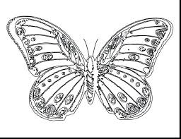 coloring pages butterfly coloring pages butterfly colouring