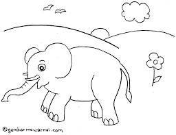foto animasi lucu hewan kurban terbaru display picture update best