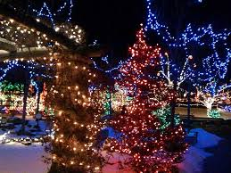 idaho falls christmas lights 240 best things to do in boise images on pinterest idaho bubble