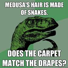 Match The Drapes Medusa U0027s Hair Is Made Of Snakes Does The Carpet Match The Drapes