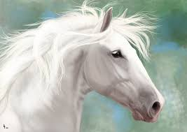 white mustang horse white horse by avorage on deviantart