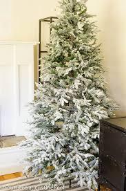astonishing ideas balsam hills christmas tree fir trees hill