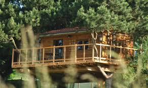 chambre d hote dans les arbres l etournelle chambre d hôtes perchée dans les arbres