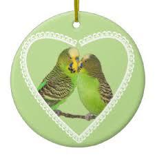 budgie bird ornaments keepsake ornaments zazzle