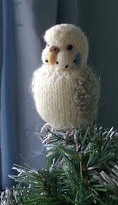 budgie on the tree so adorable birds