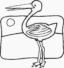 bird coloring pages color book