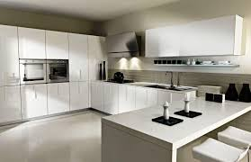 Contemporary Kitchen Cabinets White Contemporary Kitchen Cabinets Riothorseroyale Homes Best