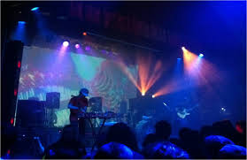 animal collective live at the winter garden live reviews