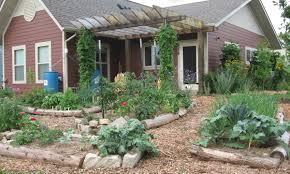 stop tilling your vegetable garden garden rant