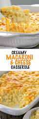 creamy macaroni and cheese casserole spend with pennies