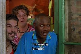 Half Baked Meme - quotes about half baked 31 quotes