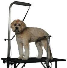 large dog grooming table groomer s helper professional set pet handling safety system