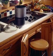 Handicap Accessible Kitchen Cabinets by Kitchen Design Atlanta Stair Lifts 770 880 3405