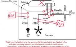 thermostat wiring explained inside 24 volt transformer wiring