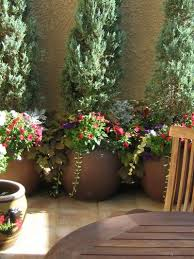 Potted Plant Ideas For Patio by 953 Best Container Gardening Images On Pinterest Pots Garden