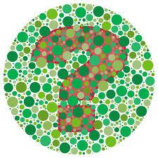 Chromosome Color Blindness The 25 Best X Chromosome Ideas On Pinterest Human Genome 23
