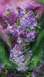 Lilac Flower by 485 Best J U0027adore Les Lilac Images On Pinterest Flowers Lilacs