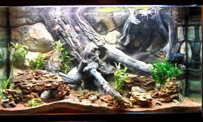 Home Aquarium Decorations Aquarium Background For Fish Tank Size 48x25 See Video Easy