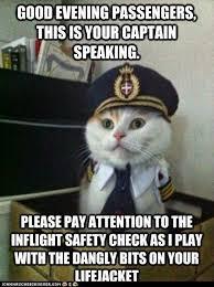 Cat Suit Meme - cat memes clean meme central