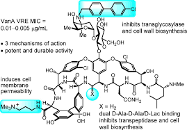 modification si e social sci peripheral modifications of ψ ch2nh tpg4 vancomycin with added