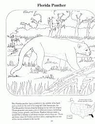 florida panthers coloring page kids coloring