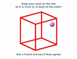 optics kids optical illusions