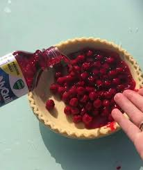 Nyquil Meme - can t wait to try this new cherry pie recipe for thanksgiving pics