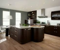 elegant and peaceful contemporary kitchen design ideas