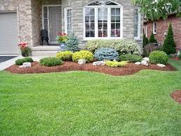 Shrub Garden Ideas Beautiful Bushes For Landscaping Ideas About Landscaping Shrubs On