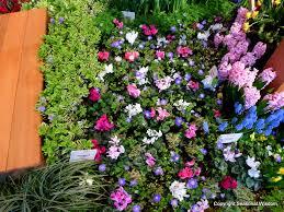 garden and flower show garden trends from 2012 northwest flower u0026 garden show