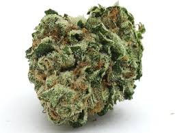 wedding cake kush wedding cake strain high time dispensary