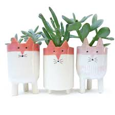 11 cactus planters to add some green to your space in the coolest