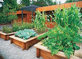 Design A Vegetable Garden Layout Sunset Magazine