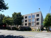 page 27 pet friendly apartments in seattle find pet friendly