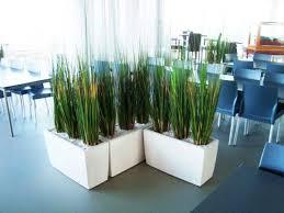 Plante Artificielle Exterieur Ikea by Acheter Ou Louer Des Plantes Artificielles