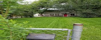 lawn care services the lawn man colorado springs co
